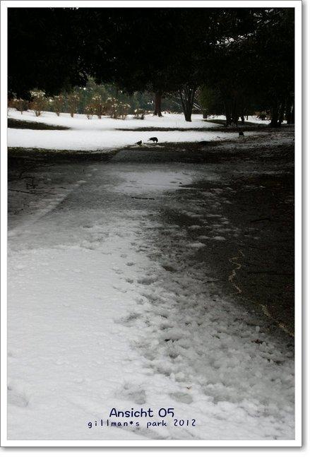SchneeDsc03348.jpg