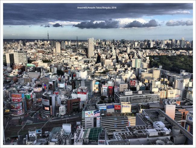 Shinjuku2016.jpg