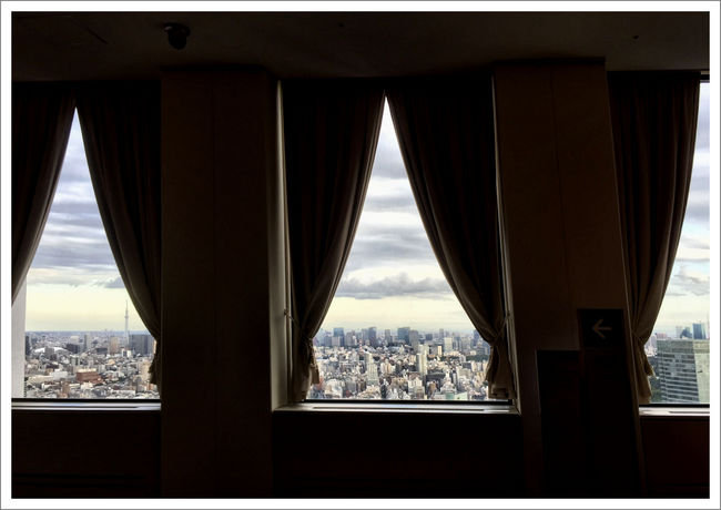 Shinjuku2016b.jpg