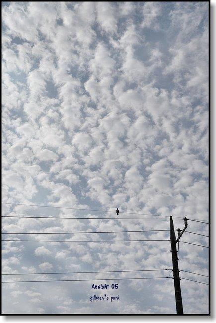 WolkenDsc_0415b.jpg