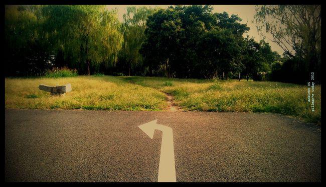 lento_20121022150211c.jpg